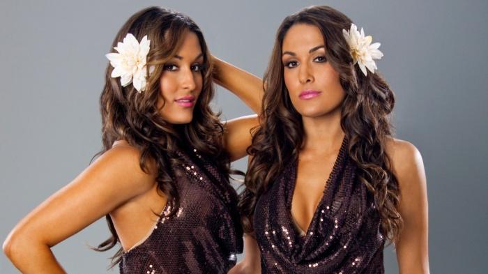 the-bella-twins-wwe
