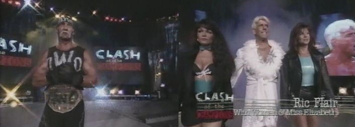 Hogan vs Flair