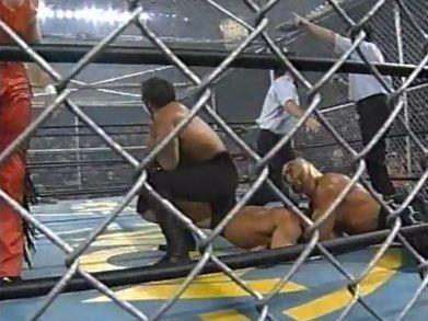 nWo Defeated Team WCW