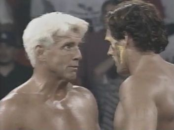 Ric Flair & Sting